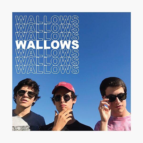 WALLOWSWALLOWSWALLOWS Photographic Print