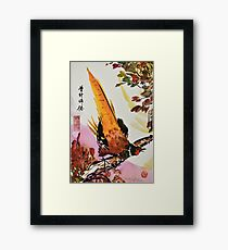 Chinese Pheasant on Branch Framed Print