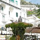 Amalfi: pigeons on fountain by Giuseppe Cocco