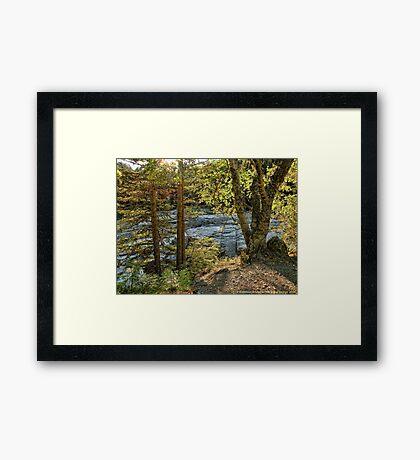 Glacier Autumn 2 (MacDonald Creek) Framed Print