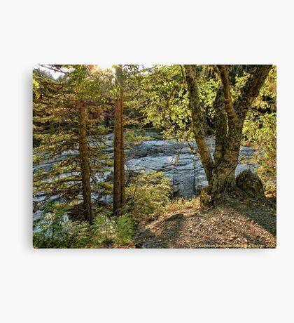 Glacier Autumn 2 (MacDonald Creek) Canvas Print
