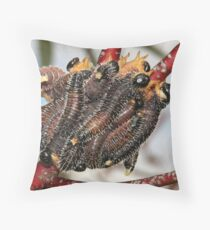 Spitfires! Throw Pillow