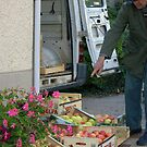 Apple merchant by AbsintheFairy