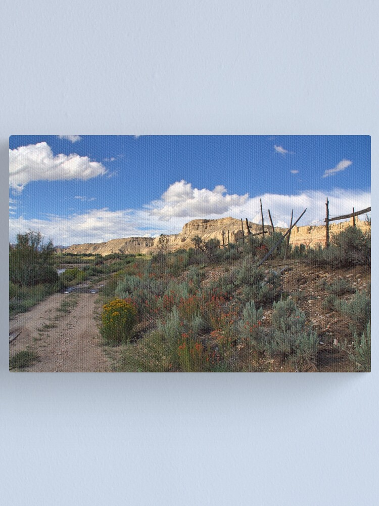 Alternate view of Dirt Road Wanderings ll Canvas Print