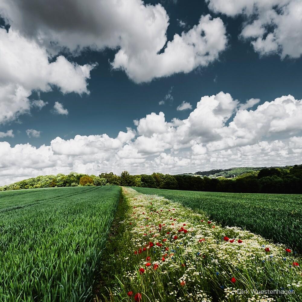 Sustainable Agriculture by Dirk Wuestenhagen