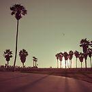 Venice Beach by Chris Muscat
