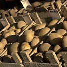 Potato Varieties by AbsintheFairy