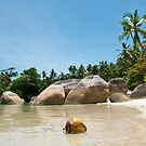 Washed Ashore at Belitung (2/2) by ferryvn