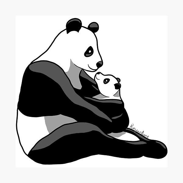Panda Parent and Child 1 Photographic Print