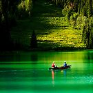 Emerald Paradise by Suraj Mathew