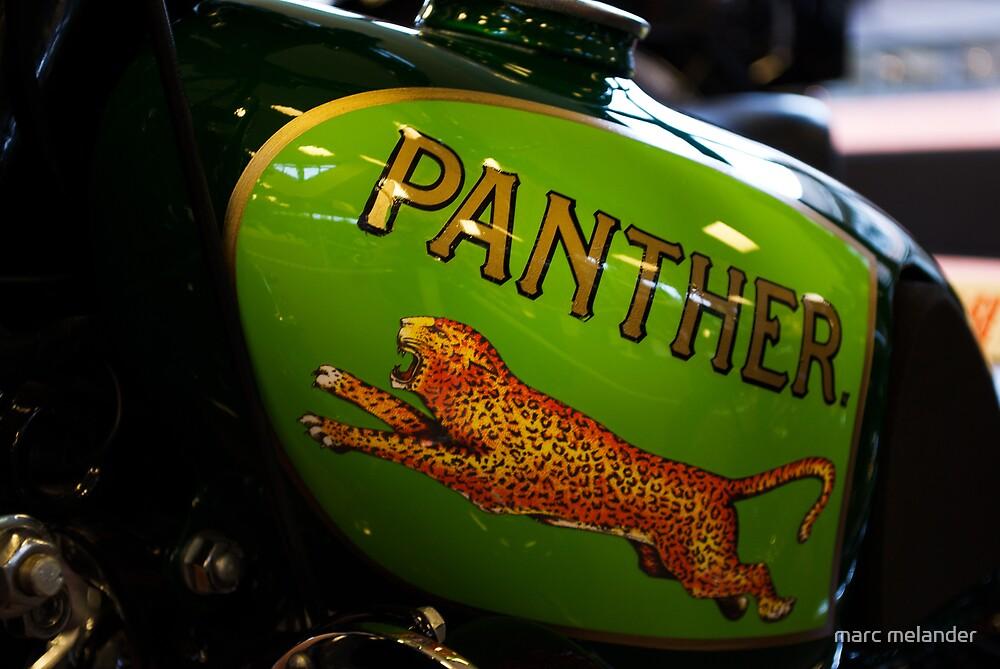Panther by marc melander