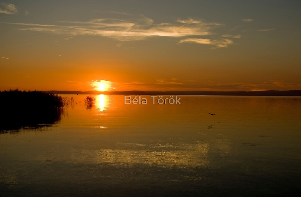 Evening stillness by Béla Török