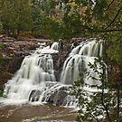 """Gooseberry Upper Falls"" by MarieR"