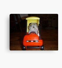 Hamster trip Canvas Print