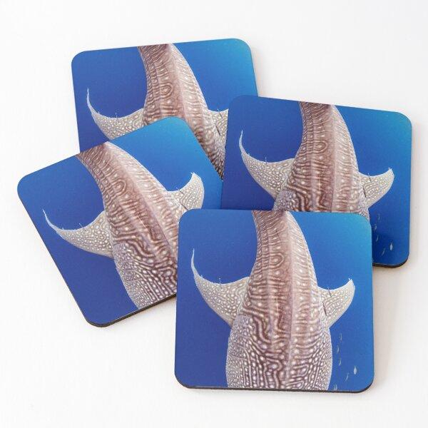 Gentle giant Coasters (Set of 4)