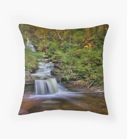 ... And Down It Goes... Throw Pillow