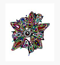 Super Nova Flower Photographic Print