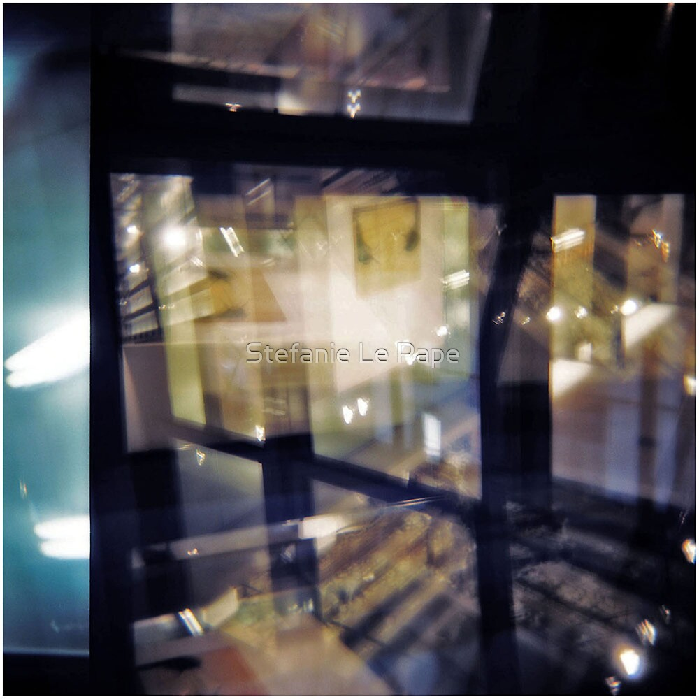caged flight by Stefanie Le Pape