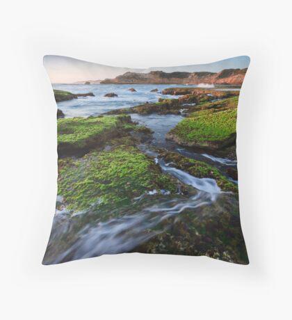 Rock Walker Throw Pillow