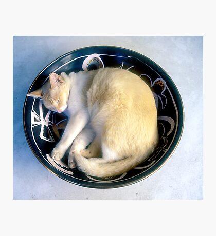Jasper in the Russian Bowl Photographic Print