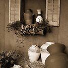 Simple Beauty by Wendy  Chapman