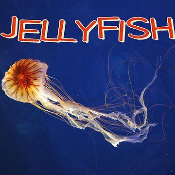 Jellyfish Calendar by gleekgirl
