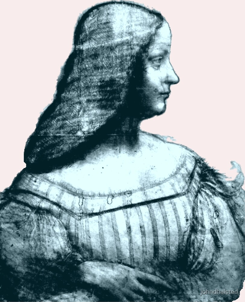 PORTRAIT OF ISABELLA D'ESTE (in the LOUVRE)  from the ebook THE DRAWINGS OF LEONARDO DA VINCI - 49 pen and ink sketches and studies by the Master by johndhalsted