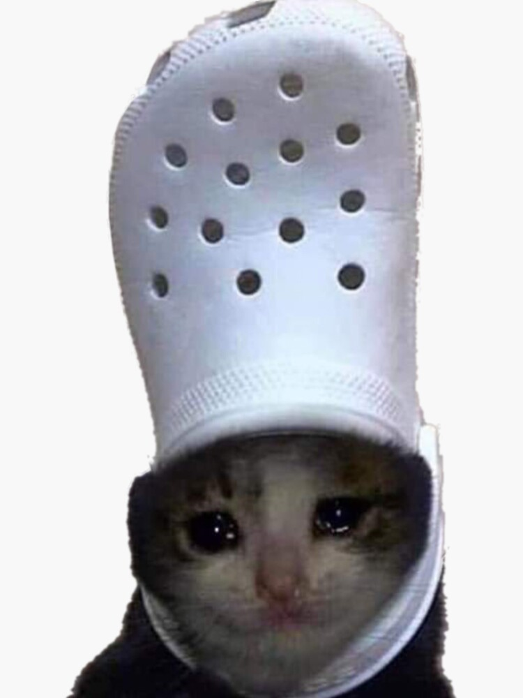 Crying Cat Croc Meme by bgsmall