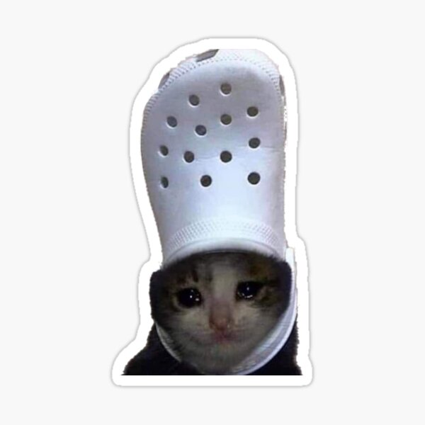 Crying Cat Croc Meme Sticker