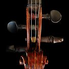 Violin study by Erika Gouws