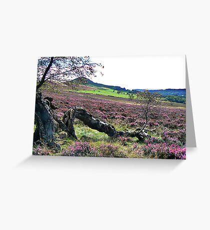 Hawnby Moor Greeting Card