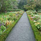 Formal garden walkway by nealbarnett