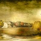Golden Days by Michael  Petrizzo
