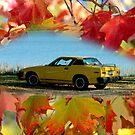 Penny Enjoying Fall... by Larry Llewellyn