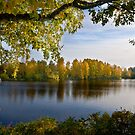 River Oulujoki, autumn by finnarct