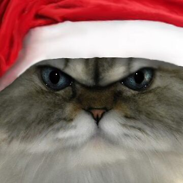Christmas Cat by ywill