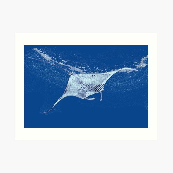 Painting style Manta ray Art Print
