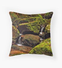 Misc Waterfall #2 Throw Pillow