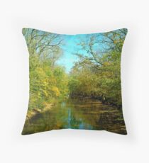 101010-1  ANOTHER ANGLE Throw Pillow