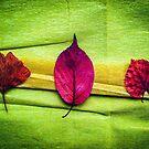 Magic Autumn ...Fellows by Yukska