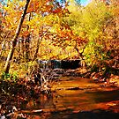 Fall on the White River by kentuckyblueman