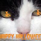 HAPPY HALLOWEEN! by Sandra Cockayne