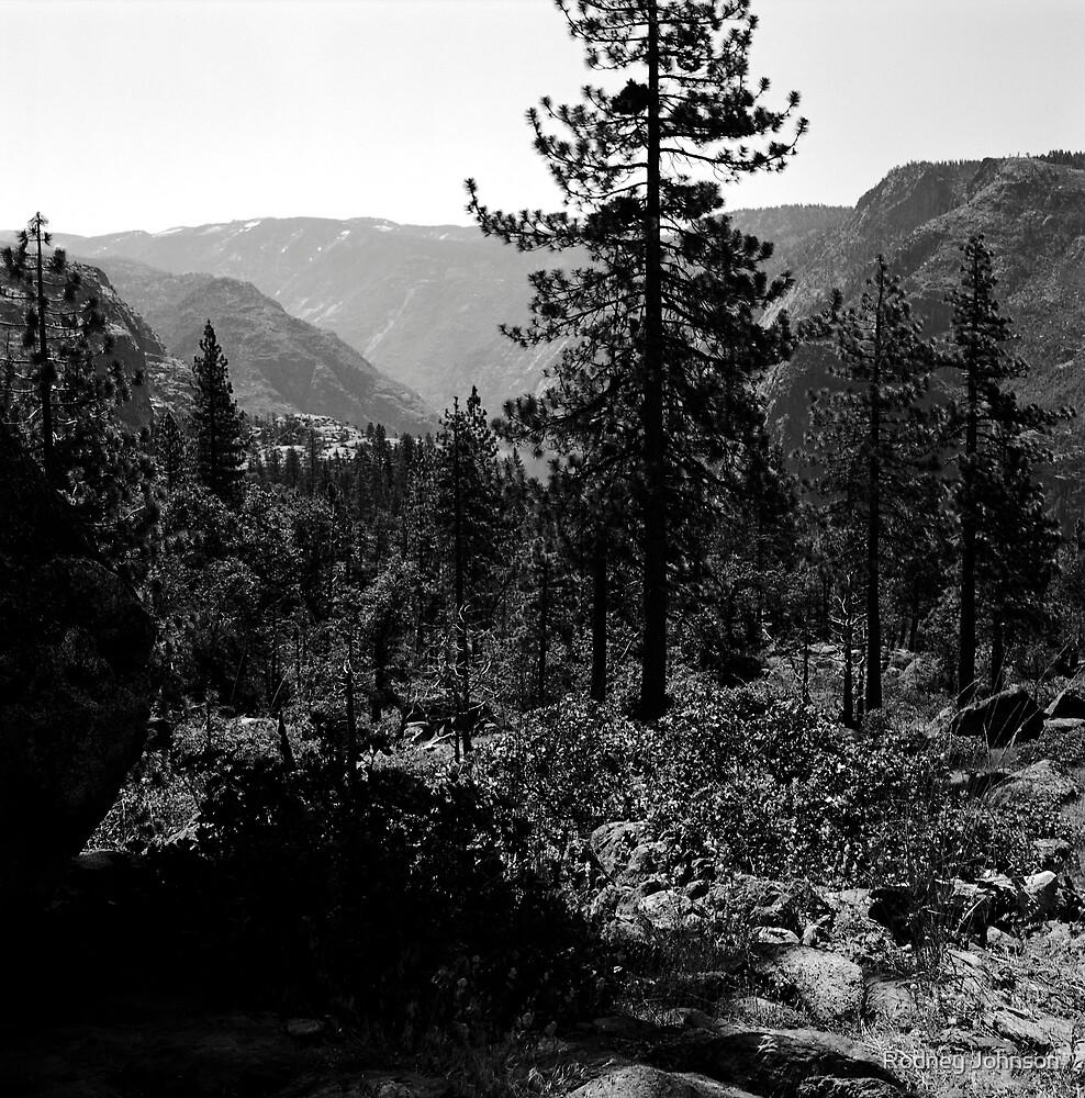 Near Hetch-Hetchy in Yosemite N.P. by Rodney Johnson