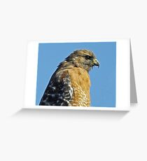 Concentrating Greeting Card