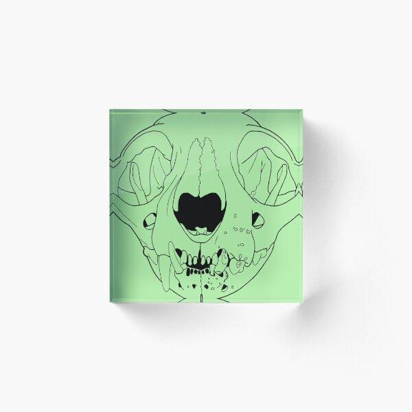 Old Cat Skull, transparent line art Acrylic Block