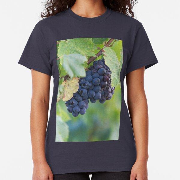 grape and vineyard Classic T-Shirt