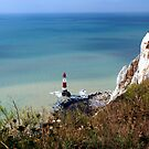 Beachy Head and the Lighthouse by John Dalkin