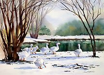 Geese in the Snow by Ann Mortimer