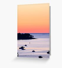 Pale Pink Maine Sunrise  Greeting Card