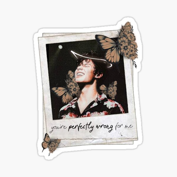 Shawn Mendes Butterfly Tattoo: Shawn Mendes Polaroid Gifts & Merchandise
